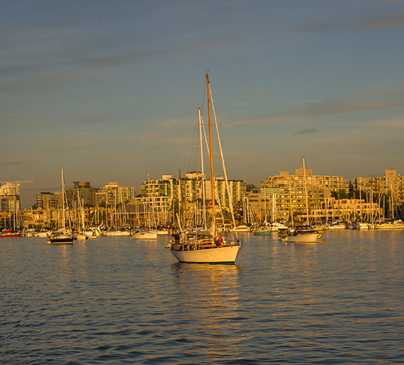 pacific yacht charters-gallery-views-379